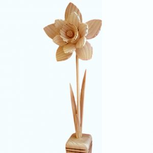 dreveny-kvet-narcis
